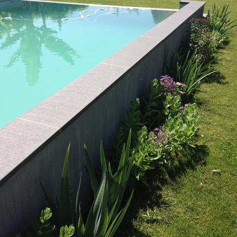 Jardin piscine pour particulier atelier papyrus for Jardin lamartine
