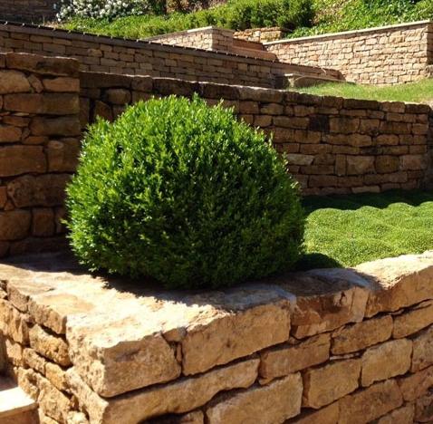 Création d'un jardin pour particulier – Saint Cyr au Mont d'Or (69)