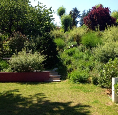 Création d'un jardin pour particulier – Saint Cyr au Mont-d'Or (69)