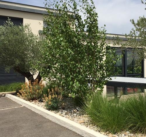 terrasse autour d 39 une piscine st cyr au mont d 39 or 69 atelier papyrus. Black Bedroom Furniture Sets. Home Design Ideas